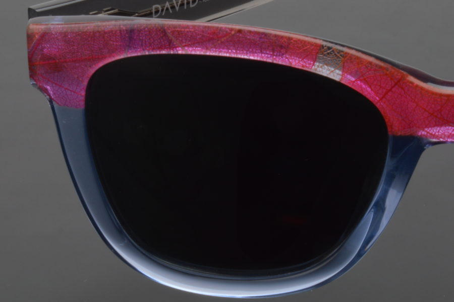 DAVID sunglasses